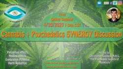 Cannabis + Psychedelics Synergy Discussi