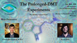 DMT Prolonged Experience Meetup Photo