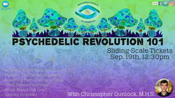 Revolution 101