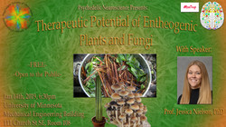 Therapeutic Potential of Entheogenic Pla
