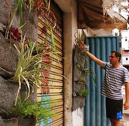 Installation de murs végétaux au Brésil