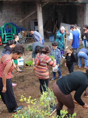 Plantation au Brésil