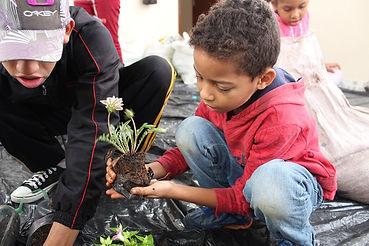 Plantation de fleurs par des enfants - Projet Juta Verde