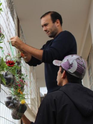 Installation d'un mur végétal