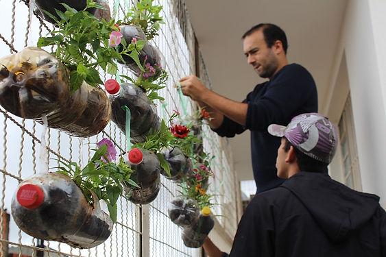 Création de murs végétalisés au Brésil