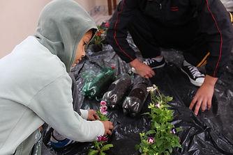 Végétalisation d'écoles par des enfants