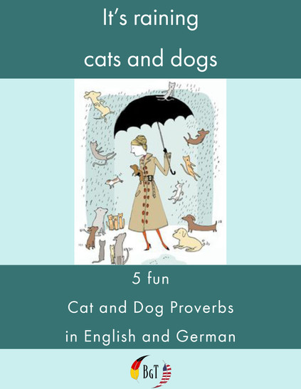 """It's Raining Cats and Dogs"" – 5 Fun Cat and Dog Proverbs Commonly Used in English and German"