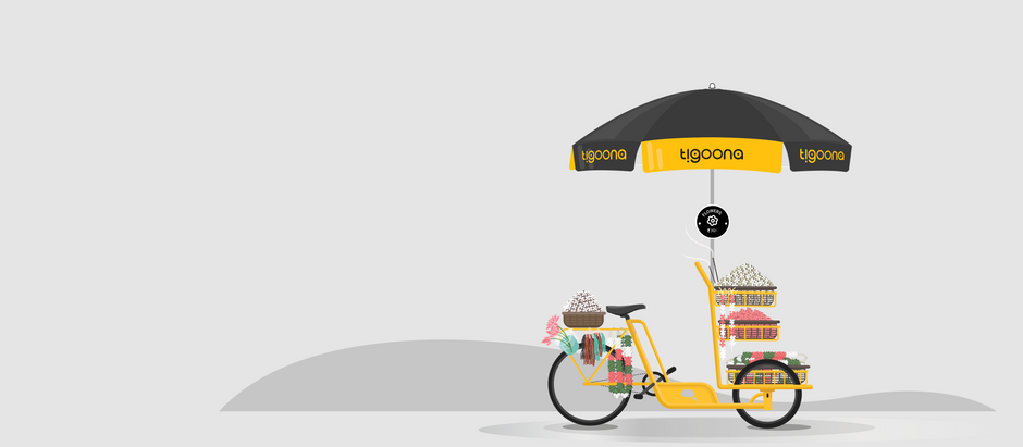 Transforming the Last-Mile Delivery Experience with Tigoona