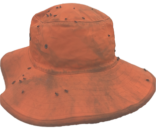 flies%20hat_edited.png