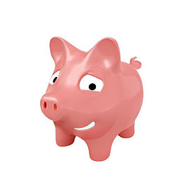 Savers pig.jpg