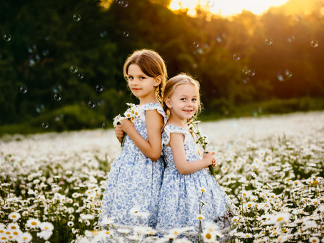 Summer Daisy Sessions