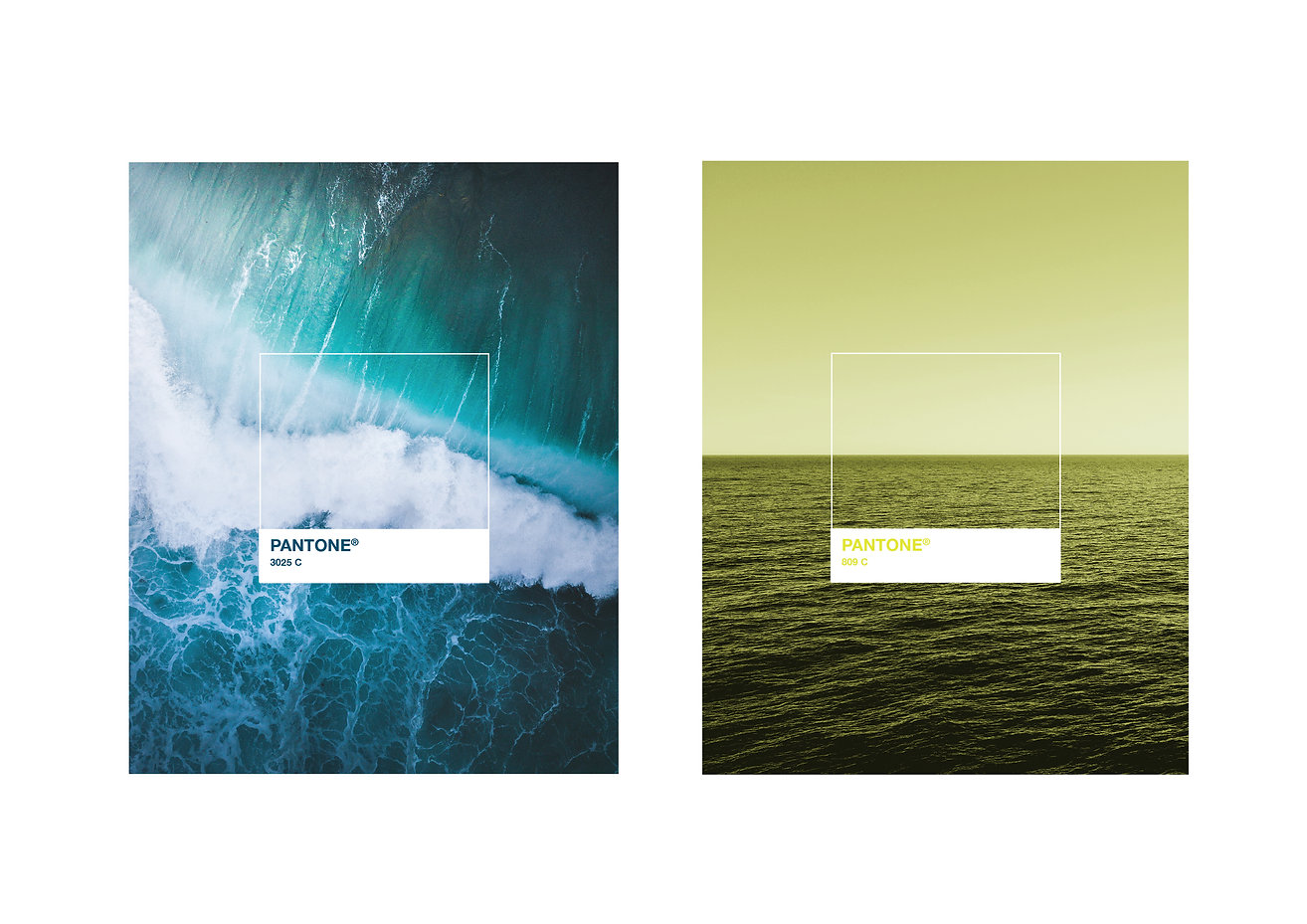 WLB Colours-01.jpg