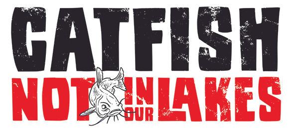Catfish logo 600px size.jpg