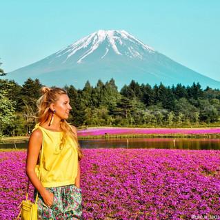 """@life_in_tokyo: """"Выучить японский язык просто невозможно - это приключение на всю жизнь"""""""