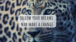 follow your dreams nad make a change