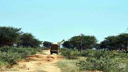 Make a Change: Africa Camp vol 1