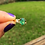 Thumbnail: 1.05ct Emerald in Pure Yellow Gold Ring size 6