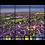 Thumbnail: Blandford Sunrise Multi-Panel Wall Art