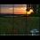 Thumbnail: Poppy Sunset 2 Multi-Panel Wall Art