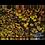 Thumbnail: Autumn Trees Top Down Multi-Panel Wall Art