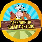 LOGOTIPO SOLAR CAETANO - PNG.png