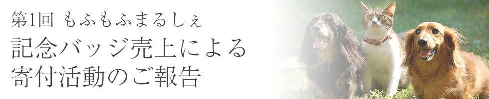 寄付活動バナー_2.jpg