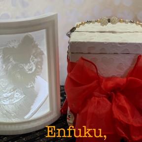 Enfuku,(エンフク)