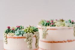 Buttercream Succulent Cakes
