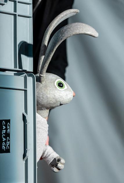 AOUUUU !-Le lapin