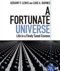 Fortunate universe.jpg
