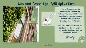 Eetbaar Turnhout: wildplukken voor beginners