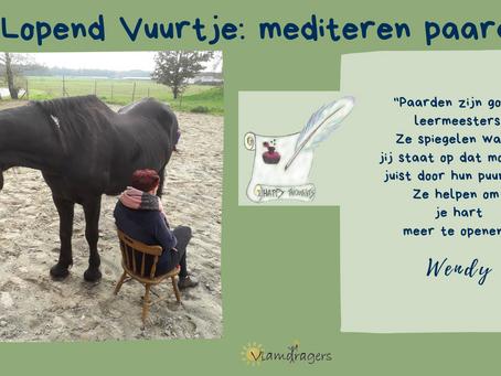 Mediteren tussen de paarden, go or no?