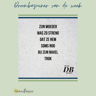 Droombazuiner #48.png