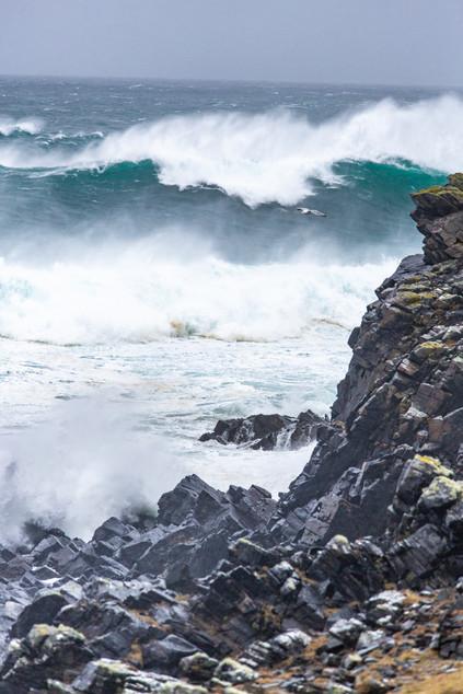 Ness Waves 1