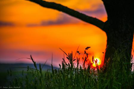 sunset crulivig.jpg