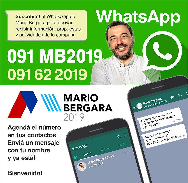 mario whatsapp.jpg