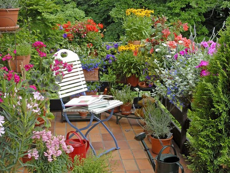 Gardening in Small Spaces:  Inspiration for growing in containers on lanais and windowsills