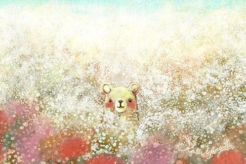 Postcard / Bear