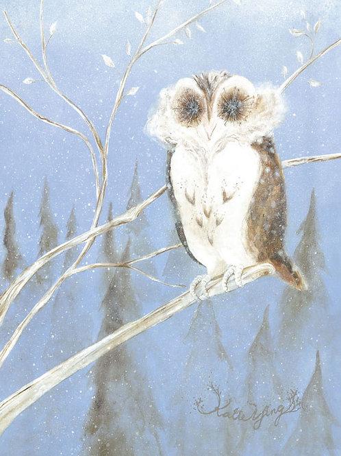 Postcard / Owl