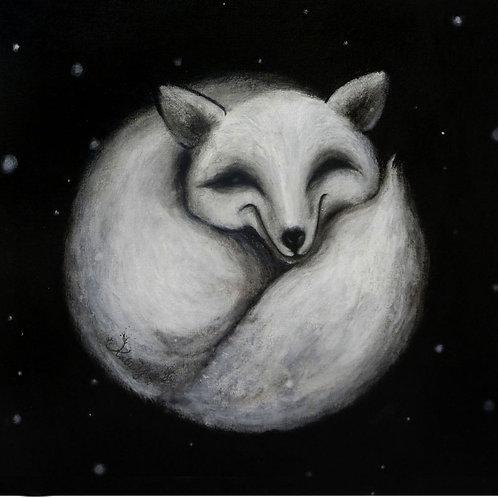 Postcard / Fox