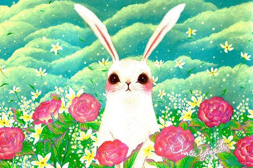 Postcard / Rose Garden