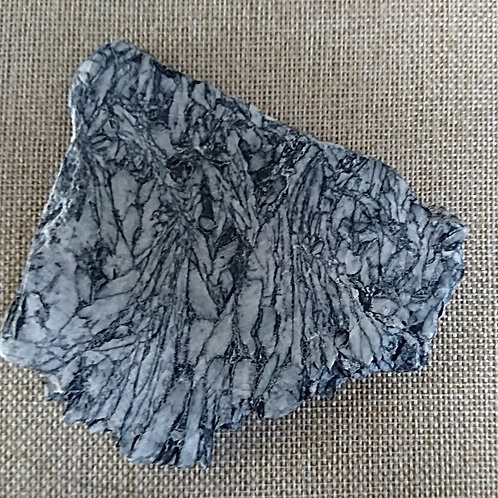 Pinolite Angel Wing Slice - Medium