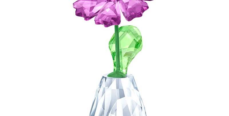 Swarovski figurer. Flower Dreams - Gerbera