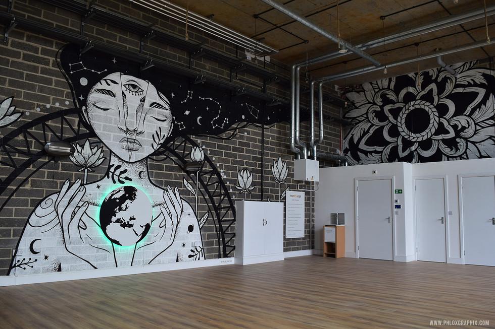 S 005 Phloxgraphix mural galaxy girl.jpg