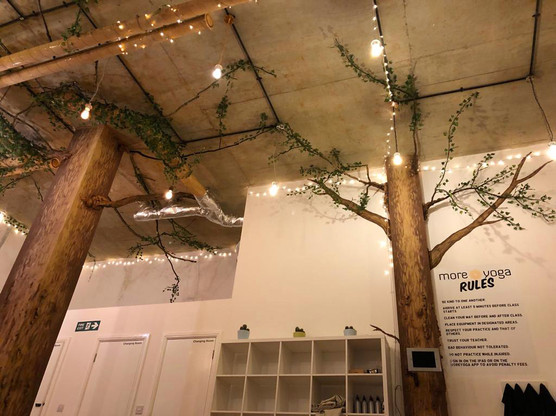 Birch Forest Mural with tree installations 04