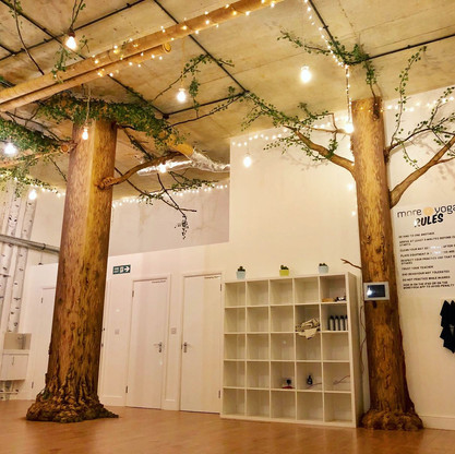 Birch Forest Mural with tree installations 01