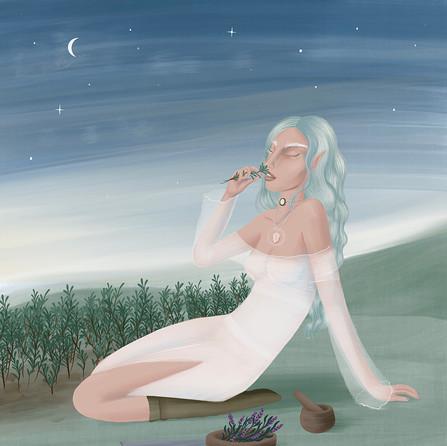 Elvish illustration.jpg