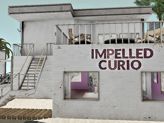 Impelled Curio Hosts Successful Opening