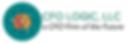 CFO LOGIC logo future.png