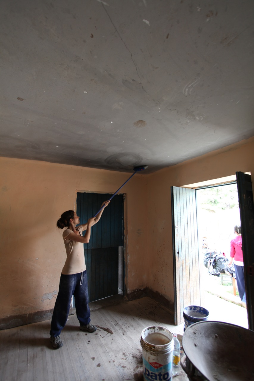 Rosa scraping the roof